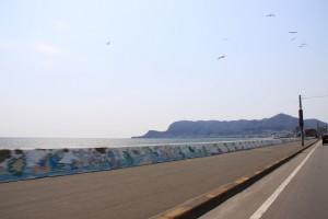 函館山と津軽海峡